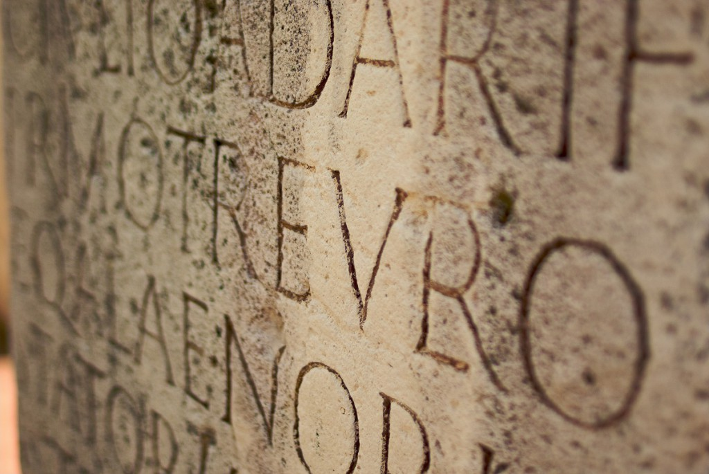 latino e dsa